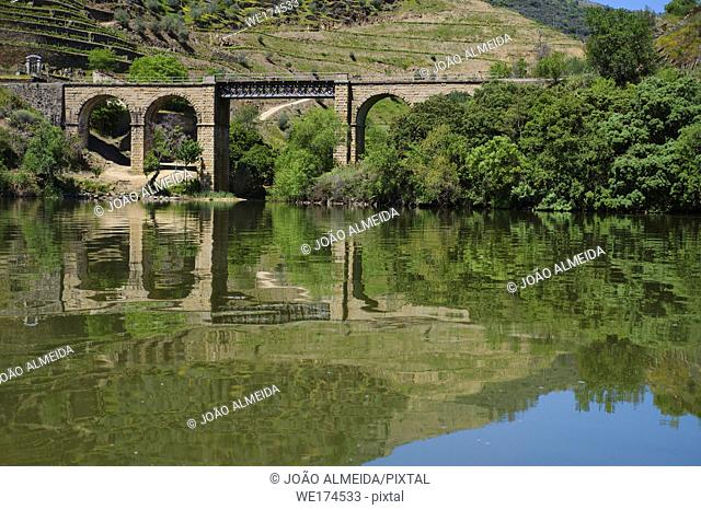 The Douro Valley, with the vineyards along its banks. Portugal
