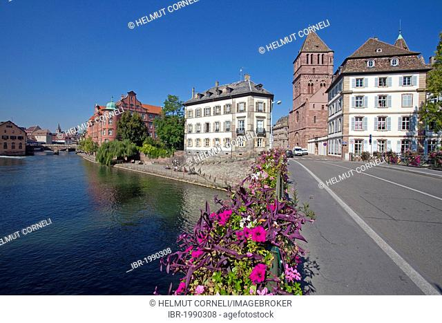 Flower-covered bridge overlooking the Ille river and the Église Saint-Thomas church, Strasbourg, Alsace, France, Europe