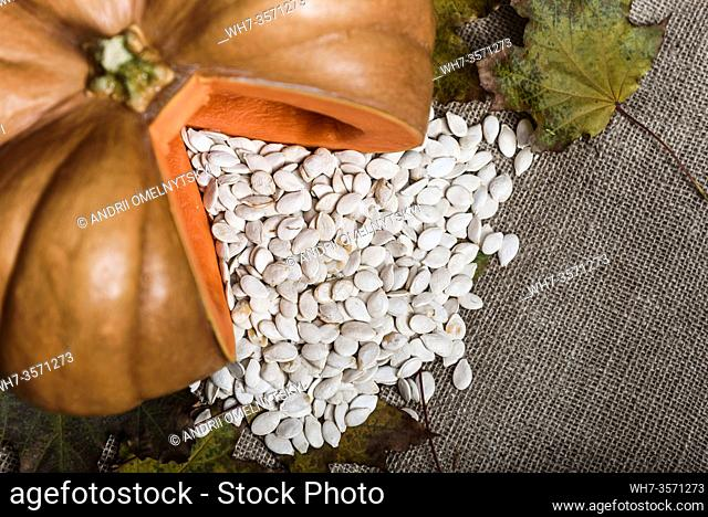 pumpkin lying on a wooden table with viburnum and seeds