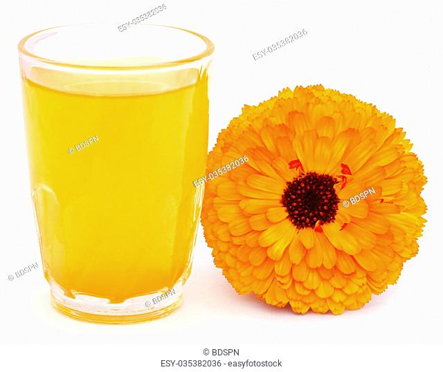 Field marigold calendula arvensis Stock Photos and Images