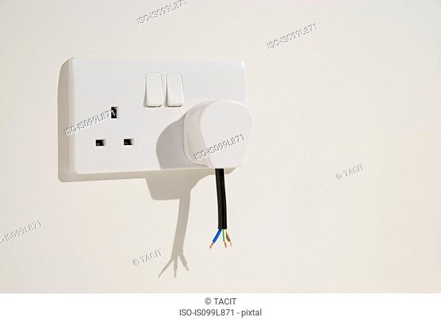 Cut cable and wires of electrical plug