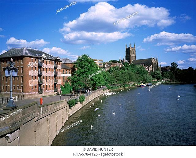 South Quay, cathedral and River Severn, Worcester, Hereford and Worcester, England, United Kingdom, Europe