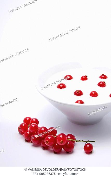 Studio photograph of a white bowl with white yoghurt and redcurrents on a white background