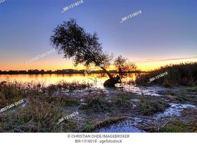 Sunset on the Elbe river in Kirchwerder, Vier- und Marschlande district, Hamburg, Germany, Europe