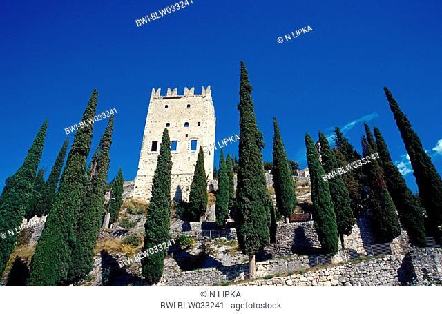 castle ruin, with cypresses, Italy, Lake Garda, Arco