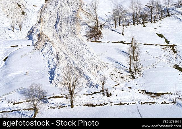 Avalanche in winter in the Valle del Miera in the Valles Pasiegos de Cantabria. Spain. Europe