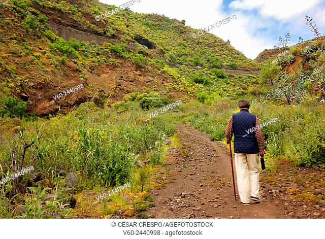 -Following the Path- Canary Island Spain