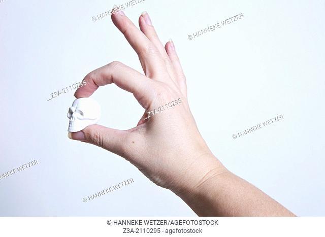 Hand Holding Little White Skull, Hand Gesture, Studio shot
