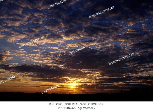 Sunrise from Pa-hay-okee Overlook, Everglades National Park, Florida