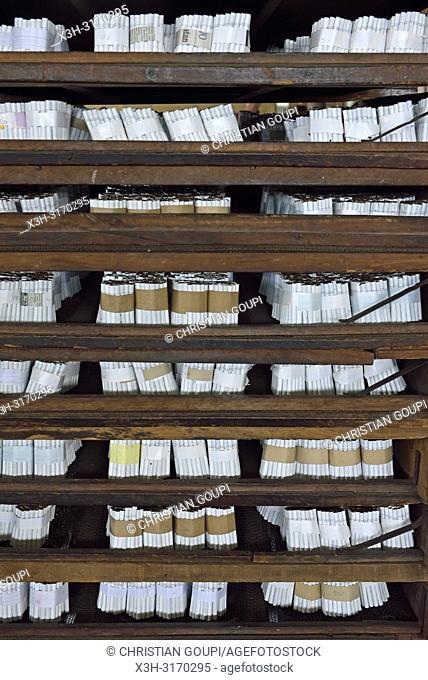 bunches of cigaretteswaiting to be packed, Tapel Koeda Kretek (Clove Cigarette) Factory at Juwana, Java island, Indonesia, Southeast Asia