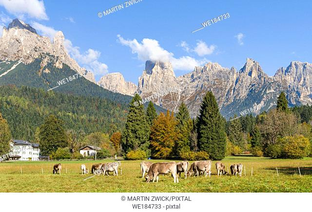 Valle del Canali in the mountain range Pale di San Martino, part of UNESCO world heritage Dolomites, in the dolomites of the Primiero