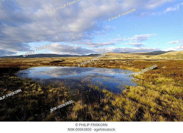 A plateau in Rondane mountains with a small lake and the clouds in mirror, Norway, Oppdal, Rondane National Park