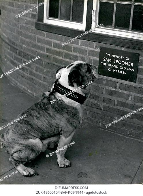 1964 - In Memory of the G.O.M. of Marbles.:Winston the bulldog mascot takes a look at the plaque which has been set up on the wall of the Greyhound Inn in...
