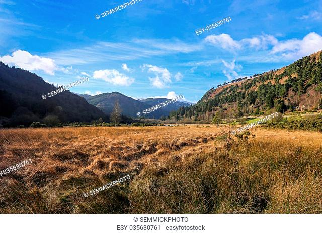 Lower lake valley on a sunny winter day in Glendalough in Ireland