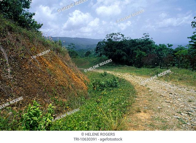 Castara Tobago Soil Erosion
