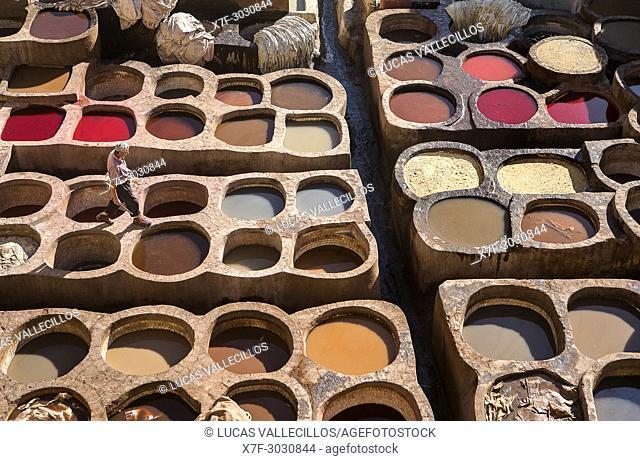 Chouwara tanneries. Fez. Morocco