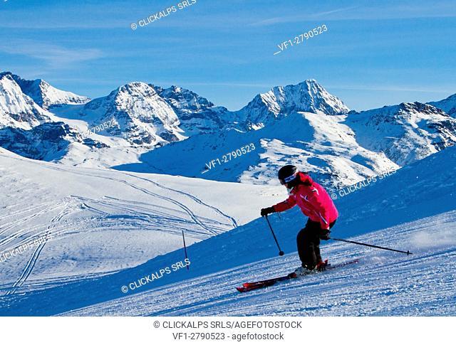 Europe, Italy, Lombardy, Sondrio. Ski alpine on the tracks that lead to the Bormio 3000 Cimino