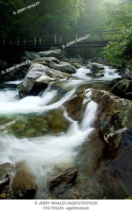 Footbridge, Mountain Stream, Great Smoky Mountains National Park, Tennessee, USA