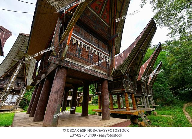 Tongkonan traditional houses in Tana Toraja, Sulawesi, Indonesia