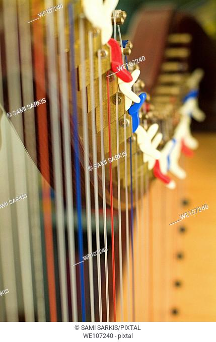 Strings lined up in a row and tightly stretched on a harp