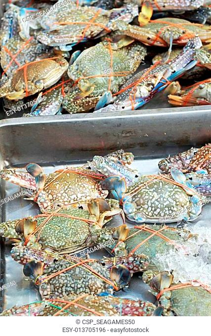 Fresh crab in the market