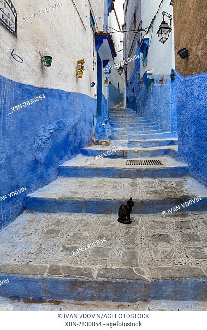 Medina, old town, Chefchaouen, Chaouen, Morocco