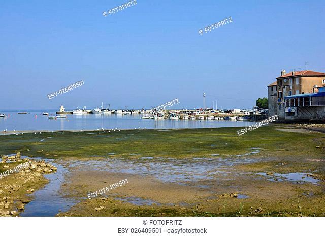 Croatia, small fishing harbor in Savudrija