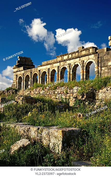 Exterior of the Basilica at Volubilis. Completed during the reign of Macrinus in the early 3rd century, it is one of the finest Roman basilicas in Africa and is...