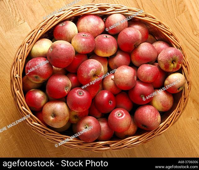 A basket full of fresh red apples
