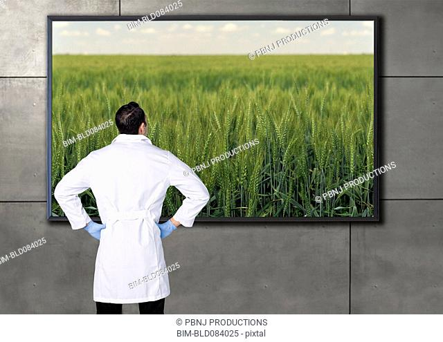 Hispanic scientist looking at agricultural image on television screen