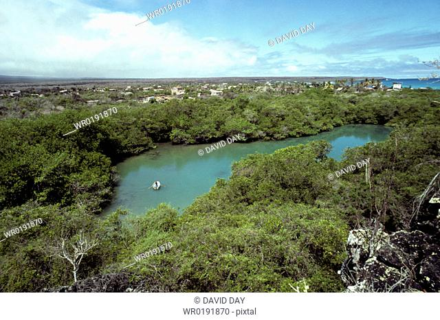 Mangrove surrounded Ninfa Lagoon with row boat, Puerto Ayora Puerto Ayora, Isla Santa Cruz, Galapagos Islands, Ecuador