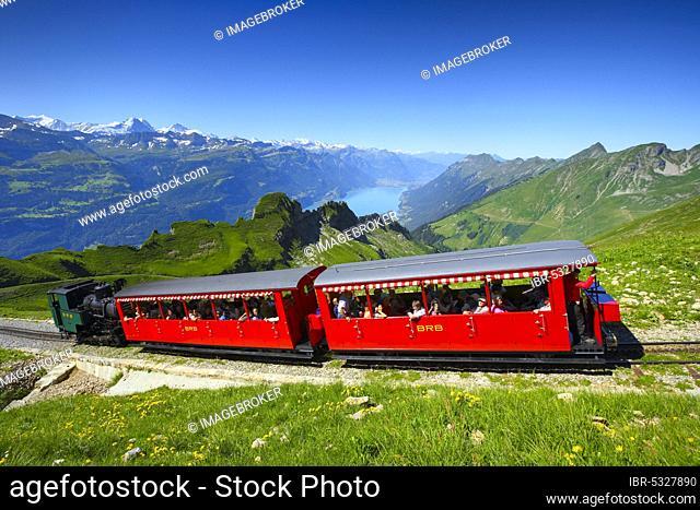 Brienz Rothorn Railway, view from the Brienz Rothorn, Lake Brienz, Bern, Bernese Oberland, Switzerland, Europe