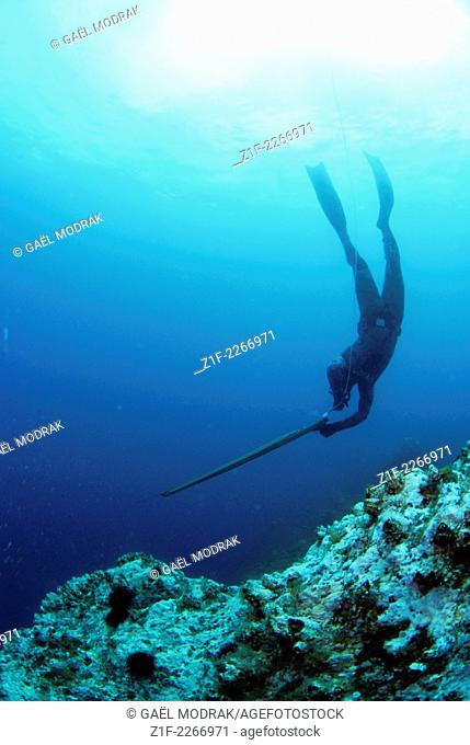 Spearfisher diving into the depth in Faial, Azores, Portugal