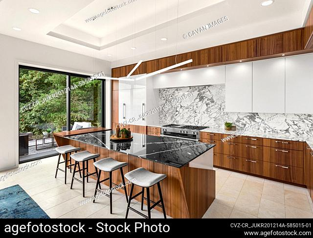 Kitchen in New Contemporary Style Luxury Home