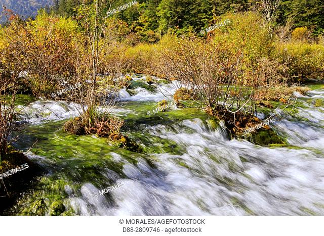 Asia, China, Sichuan province, UNESCO World Heritage Site, Jiuzhaigou National Park, Waterfall, Pearl Shoal Falls