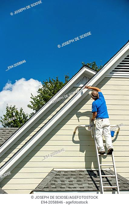 A 45 year old man on a ladder painting the white trim of a house