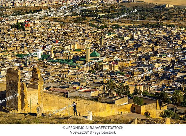 Landscape, panoramic view, Old city wall, Souk Medina of Fez, Fes el Bali. Morocco, Maghreb North Africa