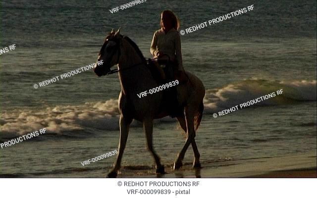 Woman on horse at seashore, riding through surf