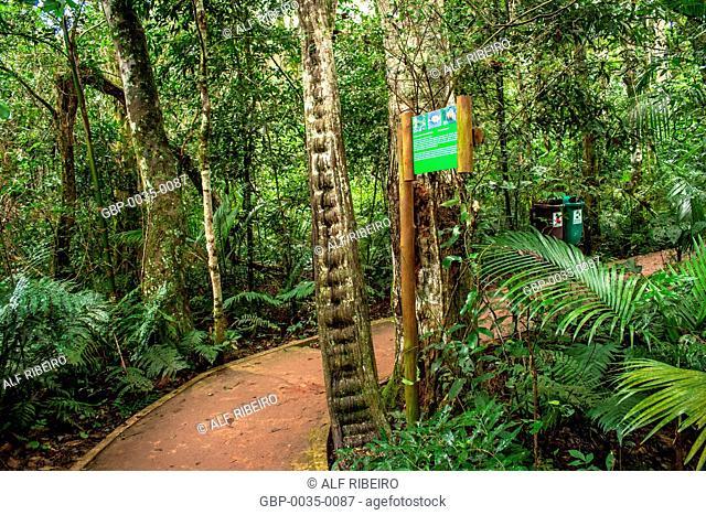 Parks birds; Foz do Iguaçu; PR; Paraná; Brazil