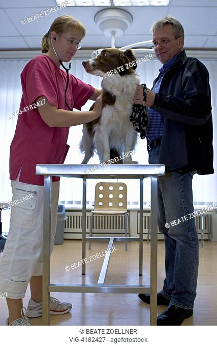 At the vet - , , Germany, 26/08/2008