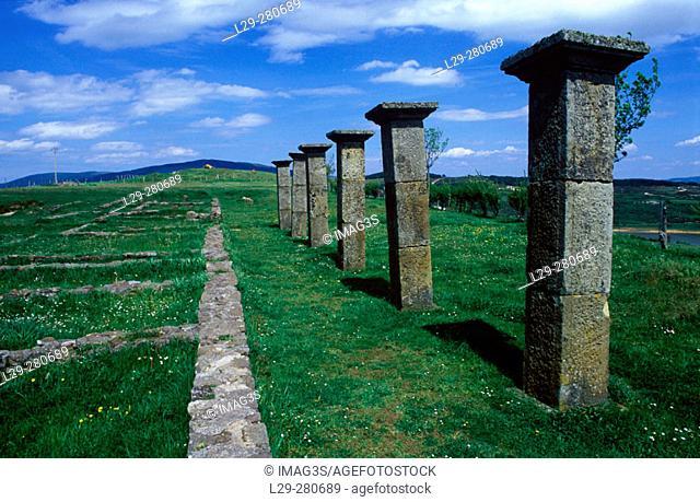 Roman ruins of Julióbriga. Retortillo. Cantabria, Spain