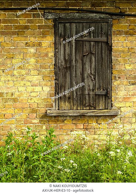 Crumbling wooden shutter on old barn