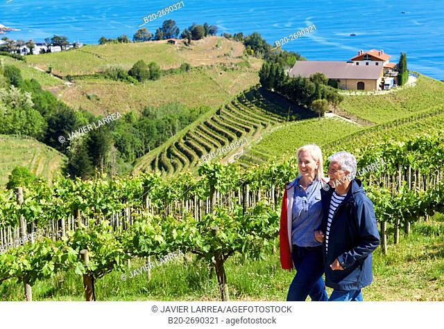 Senior couple, 60-70, Walking among txakoli vineyards, Getaria, Gipuzkoa, Basque Country, Spain, Europe