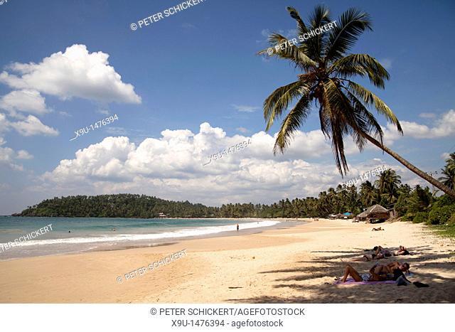 at the dream beach in Mirissa, Sri Lanka