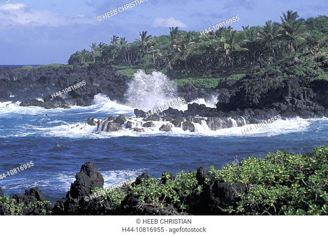 scenery, coast, rock, cliff, sea, surf, palms, Waianapanapa, State park, Hana, Maui, Hawaii, USA, United States, Ameri