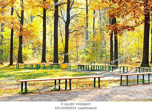 garden benches in urban park in autumn