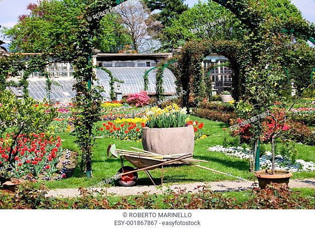 gardening in spring time