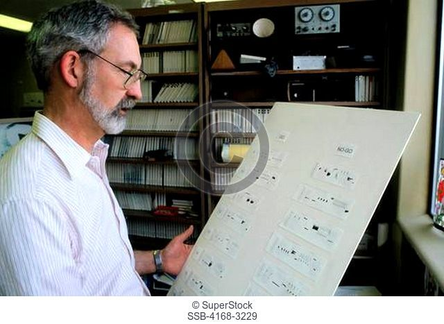 Seattle, Wa, Dr. Michael Beecher Looking At Voice Prints Of Song Sparrow Released Story
