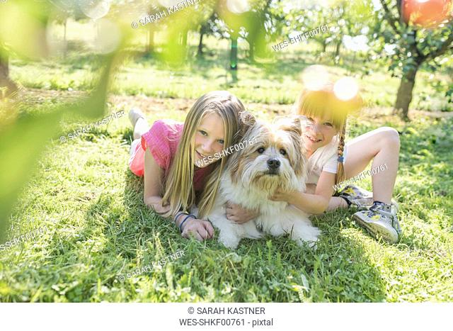 Two smiling sisters lying with dog on meadow