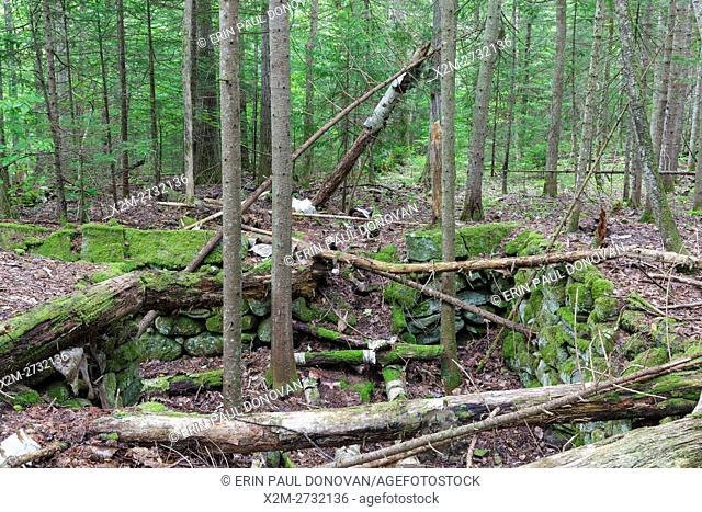 Site of Merrillâ. . s Mountain House in Warren, New Hampshire during the summer months. In 1834 Nathaniel Merrill built a farmhouse at this site